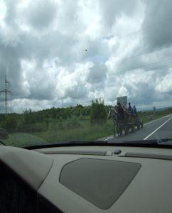PaardWagen-ElSnelweg